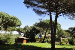 Vente terrain constructible Sainte-Maxime Dsc08641