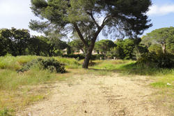 Vente terrain Sainte-Maxime DSC00207.JPG