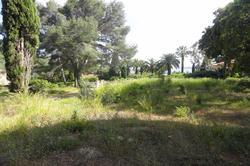 Vente terrain Sainte-Maxime DSC00208.JPG