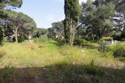 Vente terrain Sainte-Maxime DSC00210.JPG