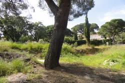 Vente terrain Sainte-Maxime DSC00212.JPG