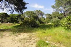 Vente terrain Sainte-Maxime DSC00213.JPG