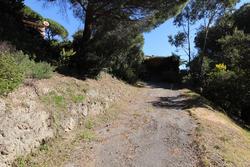 Vente terrain Sainte-Maxime IMG_4104.JPG