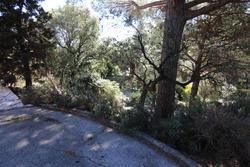 Vente terrain Sainte-Maxime IMG_4108.JPG