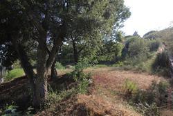 Vente terrain Sainte-Maxime IMG_6896.JPG