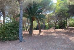 Vente terrain Sainte-Maxime IMG_0811.JPG