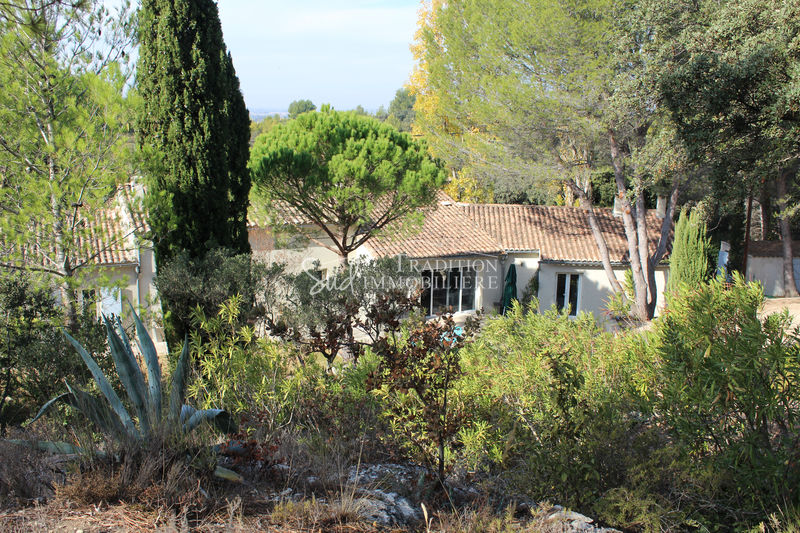 Photo Villa Fontvieille Centre village,   achat villa  4 chambres   280 m²