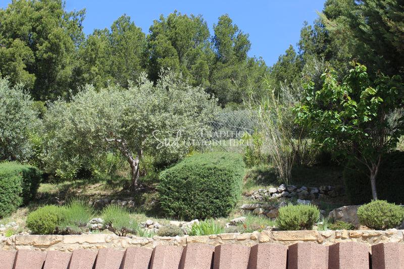 Photo n°7 - Vente Maison villa Maussane-les-Alpilles 13520 - 930 000 €