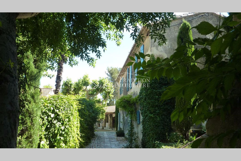 Photo Propriete de village Maussane-les-Alpilles Village,   to buy propriete de village  10 rooms