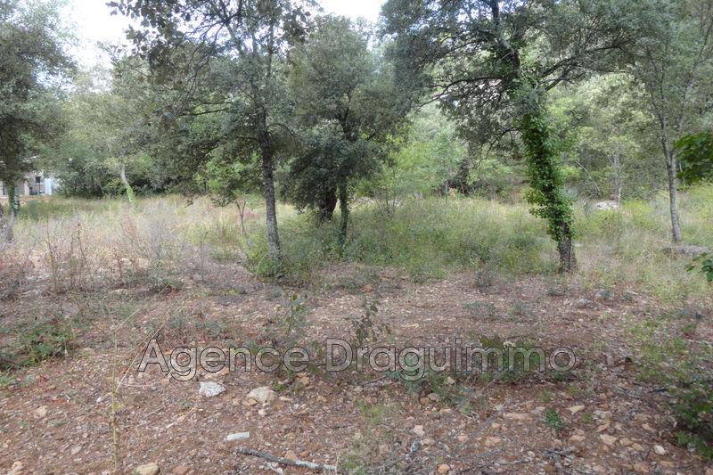 Photo n°2 - Vente terrain à bâtir La Motte 83920 - 169 000 €