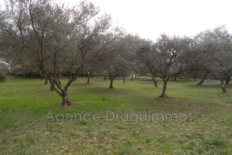 Photo Land Trans-en-Provence Campagne,   to buy land   800 m²