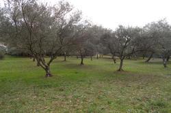 Photos  Terrain à bâtir à Vendre Trans-en-Provence 83720