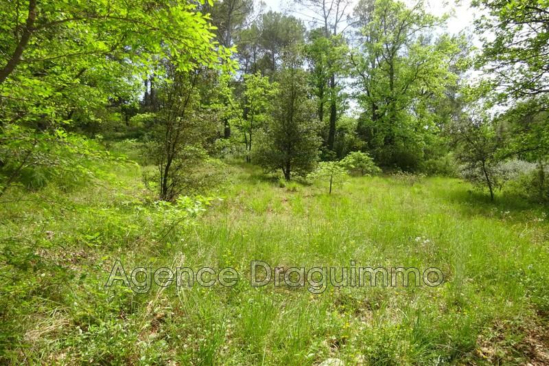 Photo n°3 - Vente terrain Lorgues 83510 - 100 000 €