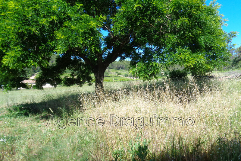 Photo n°3 - Vente maison Draguignan 83300 - 238 000 €