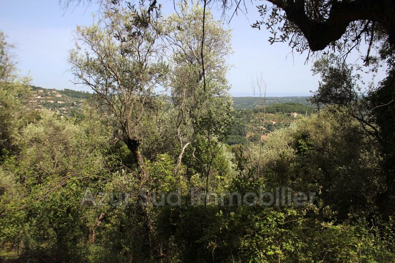 Photo Terrain Magagnosc Magagnosc,   achat terrain   1256 m²