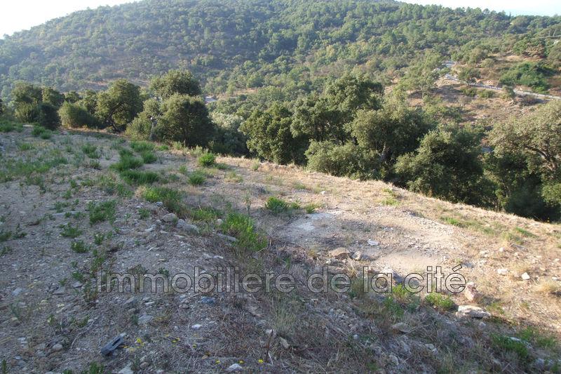 Photo Terrain constructible Grimaud Golfe de st tropez,   achat terrain constructible   2500m²