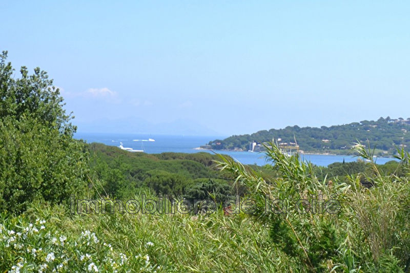 Photo Demeure de prestige Saint-Tropez Proche village,   to buy demeure de prestige  7 bedrooms   300 m²