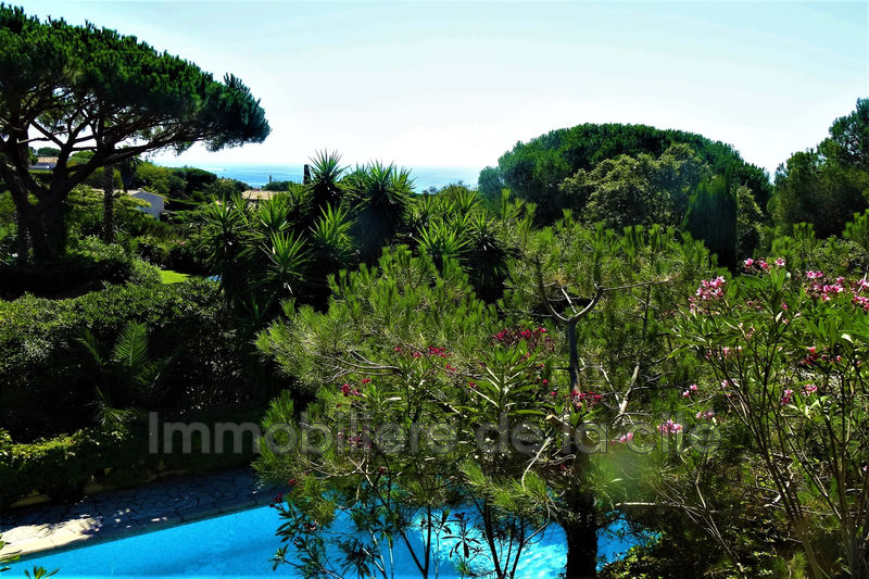 Photo Demeure de prestige Ramatuelle Bord de mer,   to buy demeure de prestige  5 bedrooms   190 m²