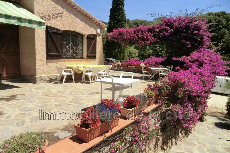 Photo Villa provençale Rayol-Canadel-sur-Mer Plage à pieds,   achat villa provençale  10 chambres   280m²