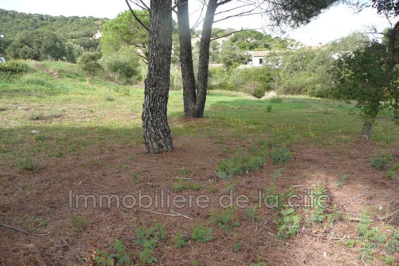 Photo Terrain constructible Sainte-Maxime Golfe de st tropez,   achat terrain constructible   1075m²