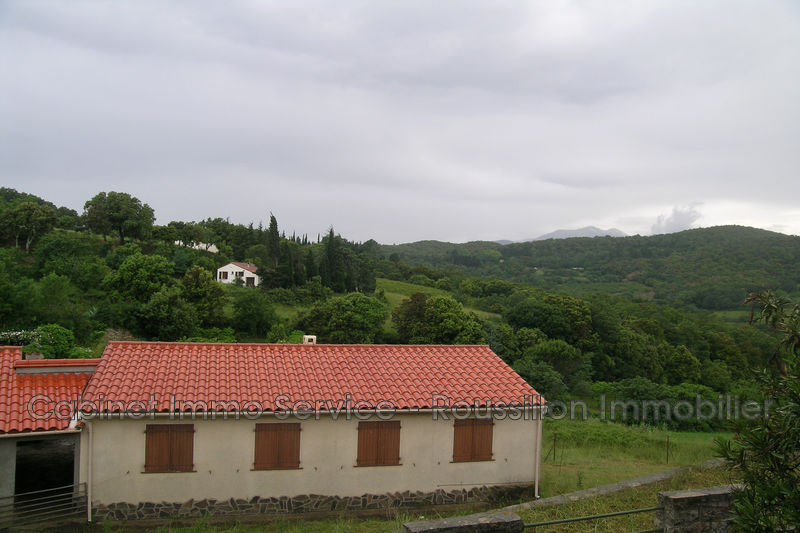 Photo n°12 - Location maison de village Oms 66400 - 540 €