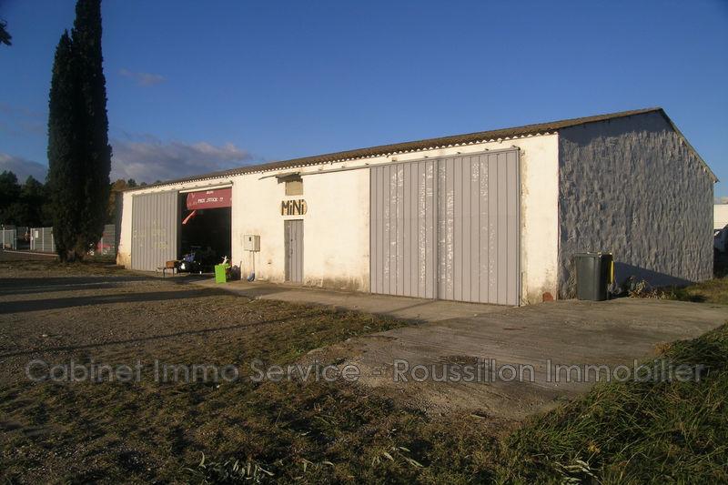 Murs local professionnel Céret  Professionnel murs local professionnel   240m²