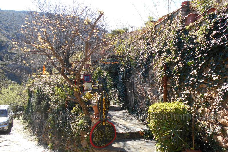 Photo n°10 - Vente maison Castelnou 66300 - 695 000 €