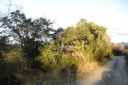 Photos  Terrain agricole à Vendre Céret 66400
