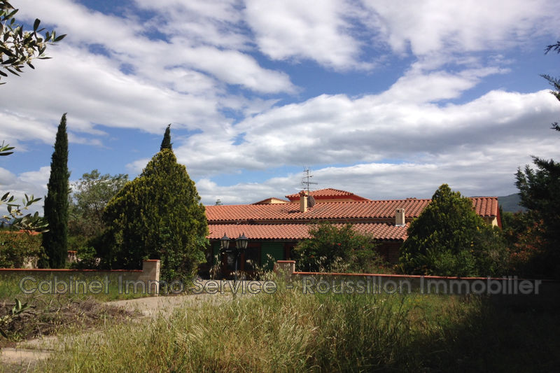 Photo House Céret Vallespir,   to buy house  5 bedroom   308 m²