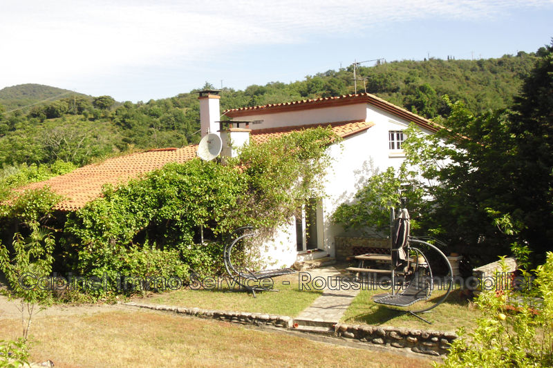 Photo House Céret Vallespir,   to buy house  4 bedroom   190 m²