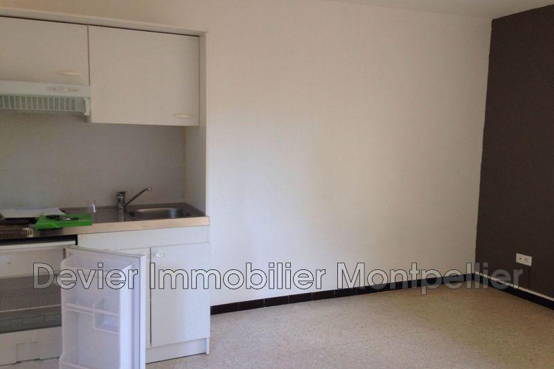 Photo n°3 - Location appartement Montpellier 34090 - 430 €