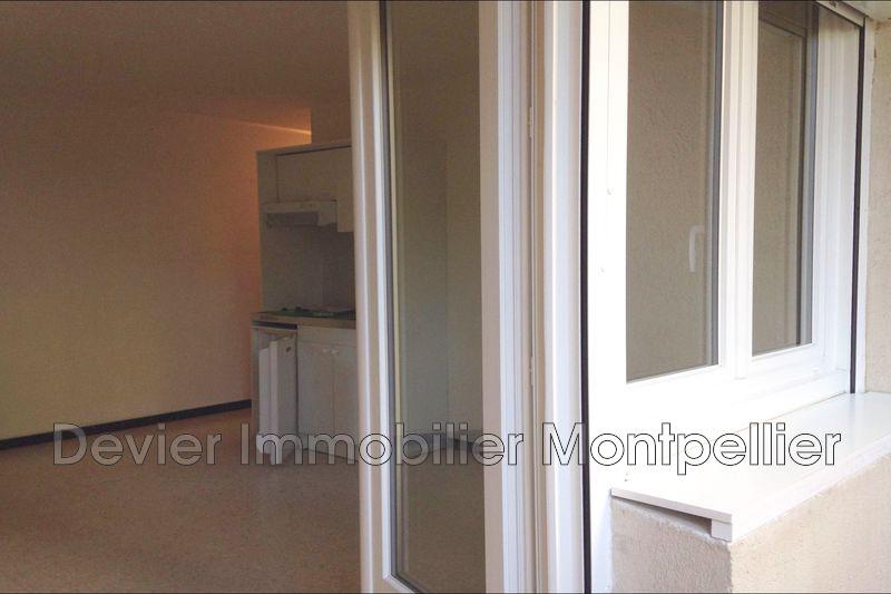 Photo n°6 - Location appartement Montpellier 34090 - 430 €