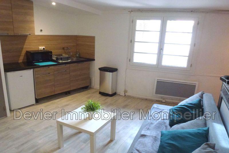 Appartement Montpellier Ecusson,  Location appartement  1 pièce   24m²