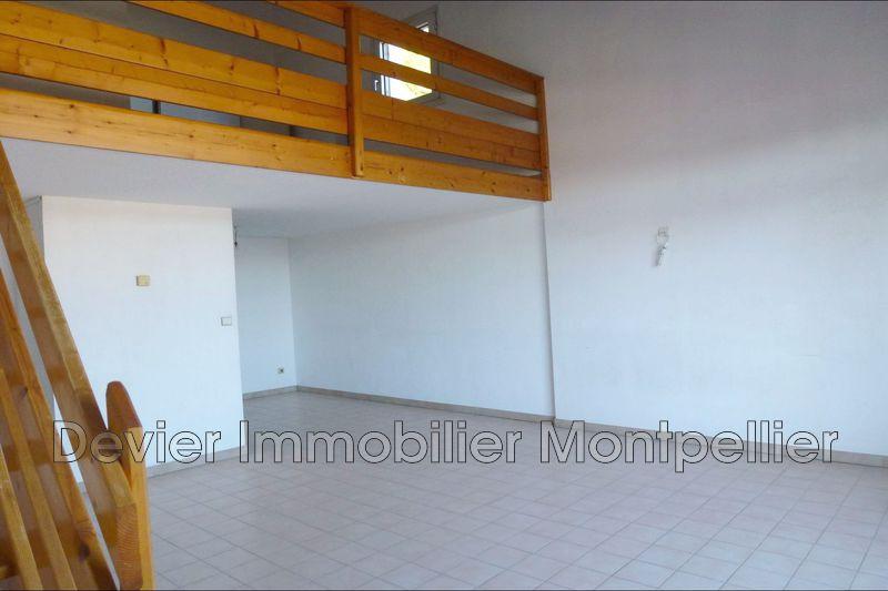 Appartement Montpellier Près d'arènes,  Location appartement  2 pièces   56m²