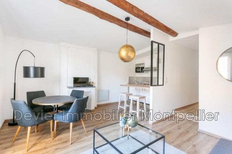 Appartement Montpellier Ecusson,  Location appartement  2 pièces   39m²