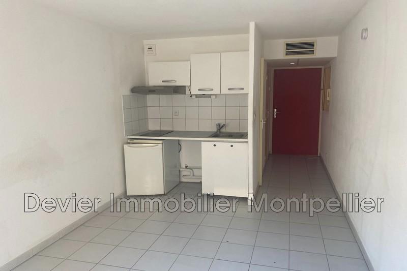 Appartement Montpellier Gare,  Location appartement  1 pièce   19m²