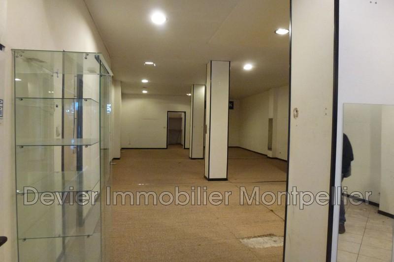 Montpellier Comédie,  Professionnel    140m²