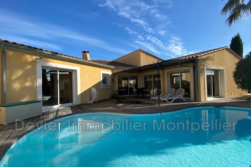 Maison contemporaine Montpellier Castelnau le lez,   achat maison contemporaine  5 chambres   240m²