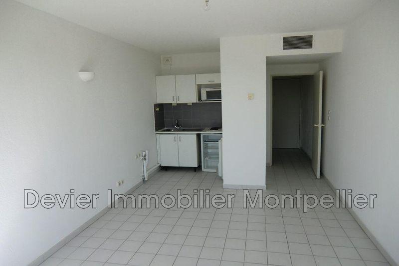 Appartement Montpellier Antigone,   achat appartement  1 pièce   23m²