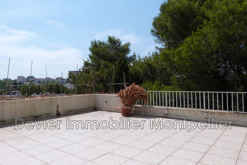 Appartement Montpellier Hôpitaux facultés,   achat appartement  2 pièces   40m²