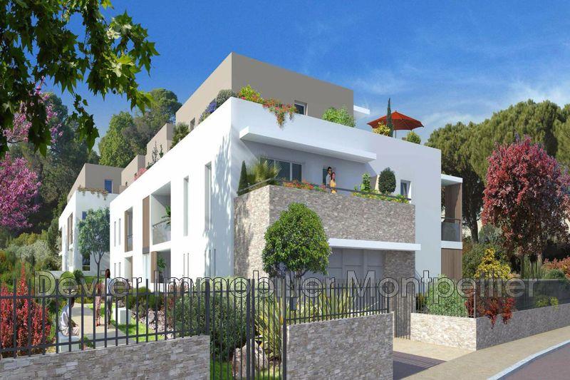 Appartement Montpellier   achat appartement  2 pièces   42m²