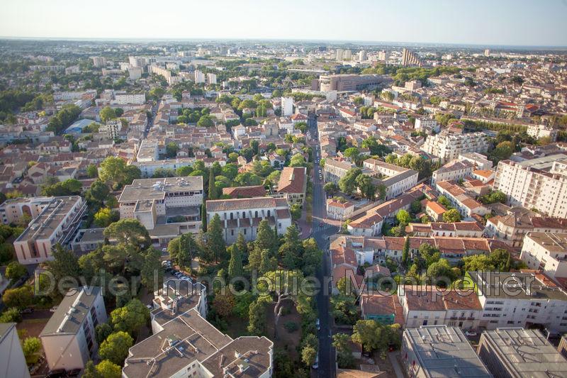 Photo Appartement Montpellier Beaux arts,   achat appartement  4 pièces   85m²