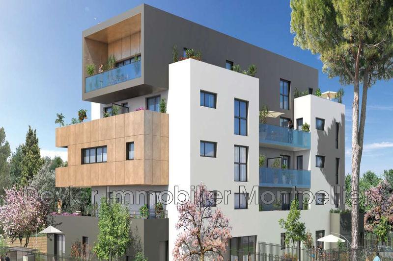 Appartement Montpellier Hôpitaux facultés,   achat appartement  3 pièces   49m²