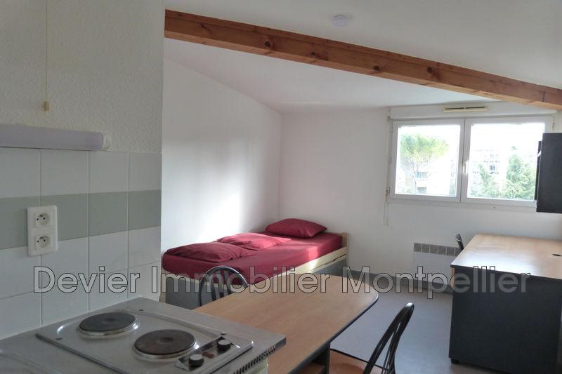 Appartement Montpellier Hôpitaux facultés,   achat appartement  1 pièce   18m²