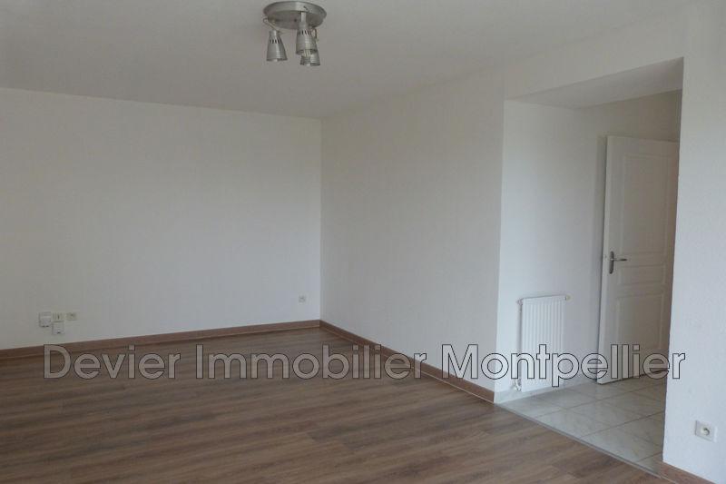 Appartement Montpellier Hôpitaux facultés,   achat appartement  2 pièces   44m²