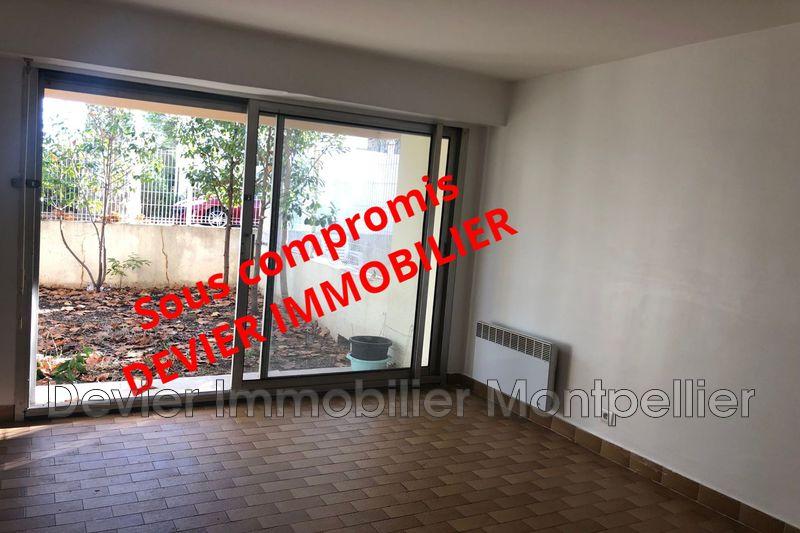 Photo Appartement Montpellier   achat appartement  1 pièce   21m²