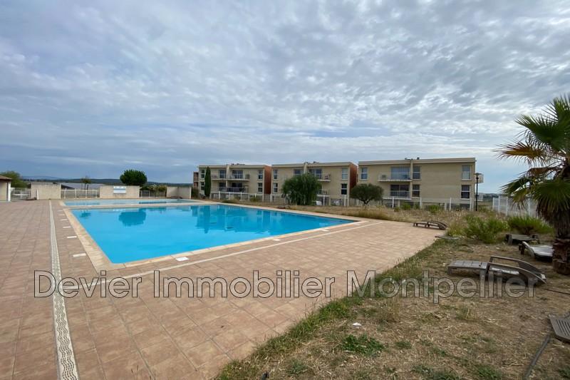 Appartement Saint-Georges-d'Orques Autres secteurs,   achat appartement  3 pièces   38m²
