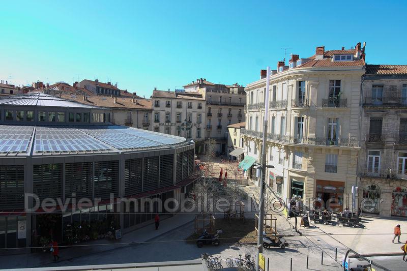Appartement Montpellier Ecusson,   achat appartement  4 pièces   117m²