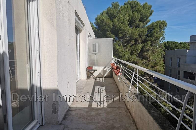 Appartement Montpellier Autres secteurs,   achat appartement  1 pièce   36m²