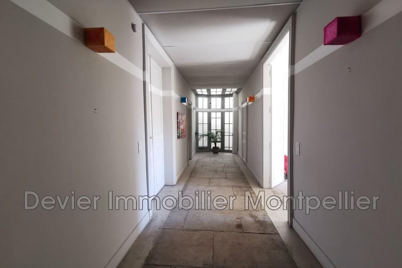 Photo n°5 - Vente appartement Montpellier 34000 - 540 800 €